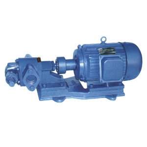 2CY型双齿轮油泵